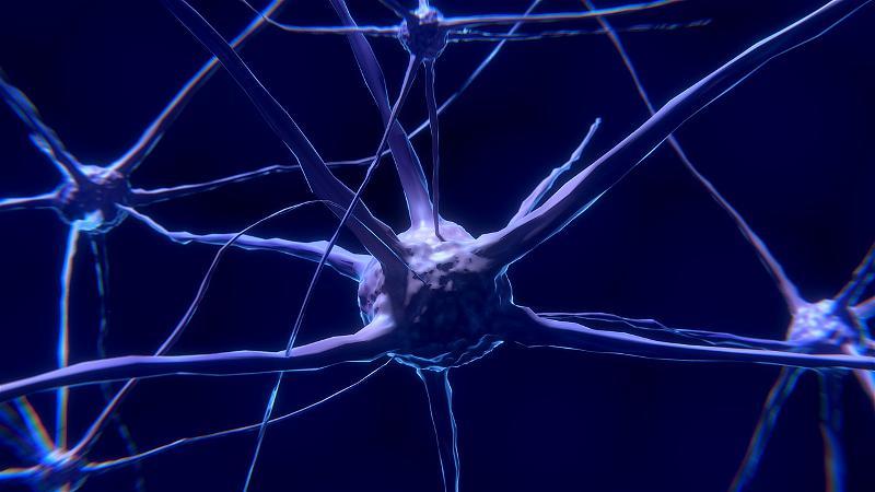 Kết nối não